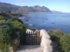 Interview with a Local: Hermanus, SA