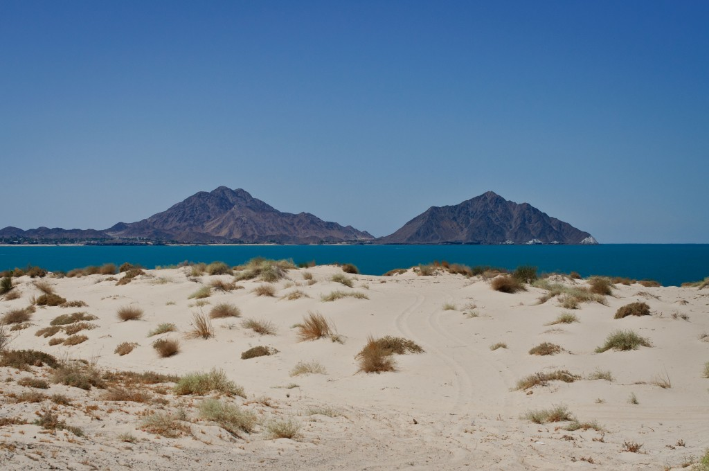 El Machorro on the Sea of Cortez