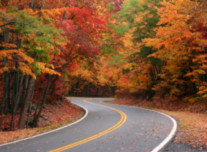 The Perfect Fall Foliage Adventure in Massachusetts