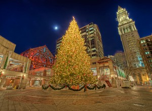 Faneuil Hall Christmas Tree