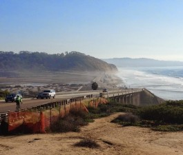 Torrey Pines Beach and State Reserve